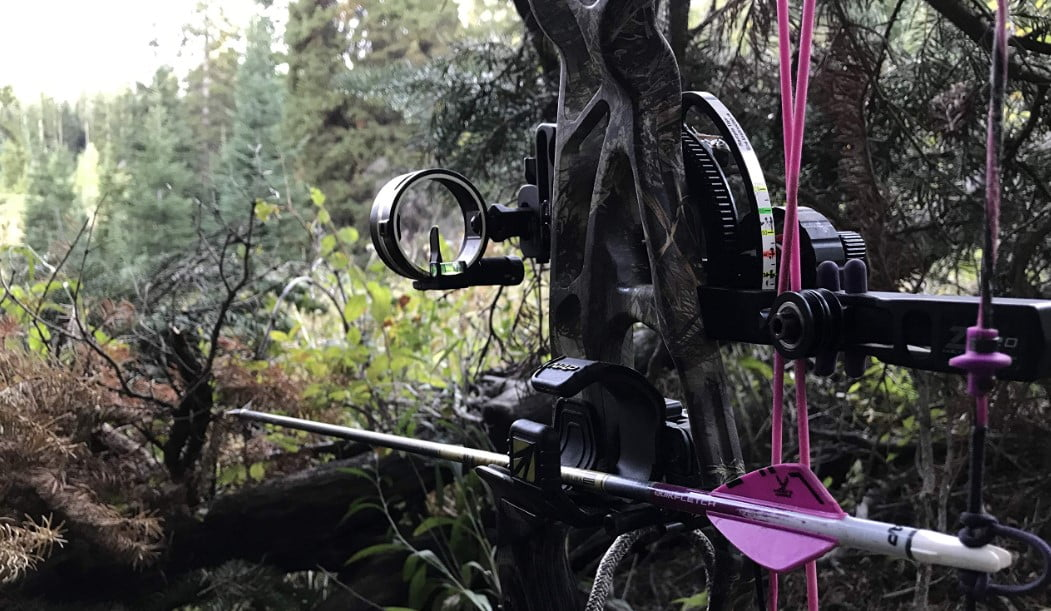 The 10 Best Single Pin Bow Sight for Hunting in 2021