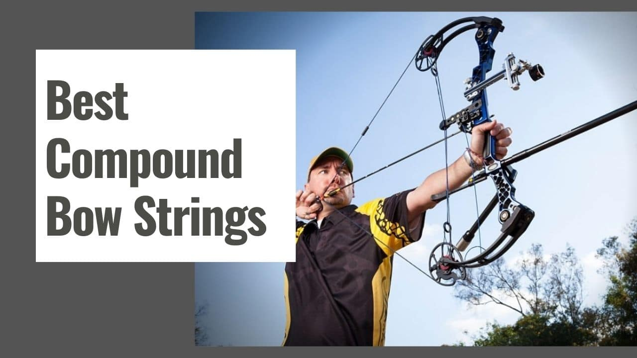 The 10 Best Compound Bow Strings in 2021
