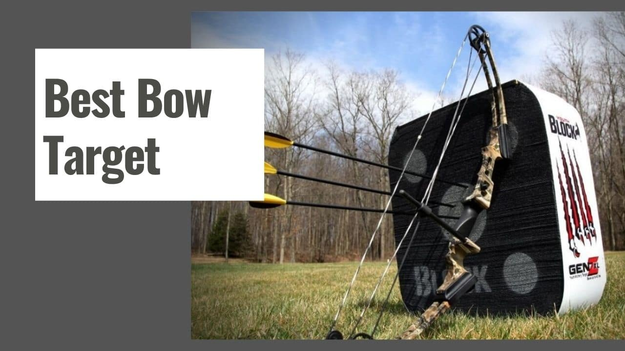 The 10 Best Bow Target in 2021