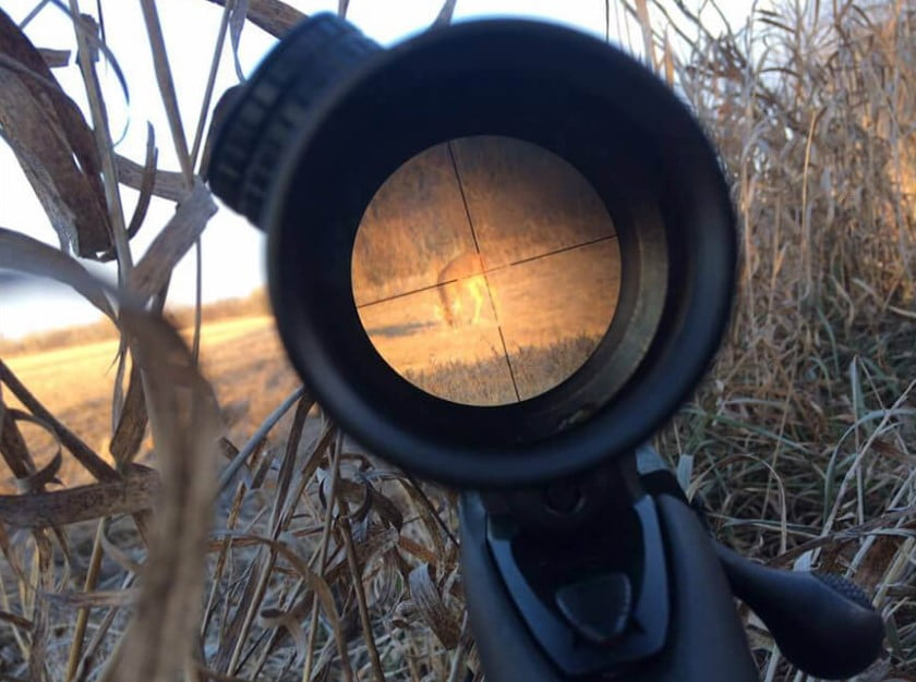 Wire VS Glass Etched Reticles