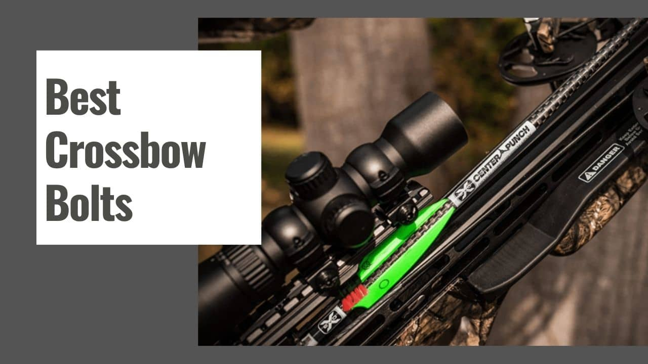 The 10 Best Crossbow Bolts for Deer in 2021